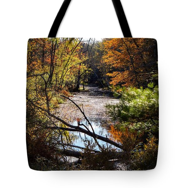Tote Bag featuring the photograph October Window by Kendall McKernon
