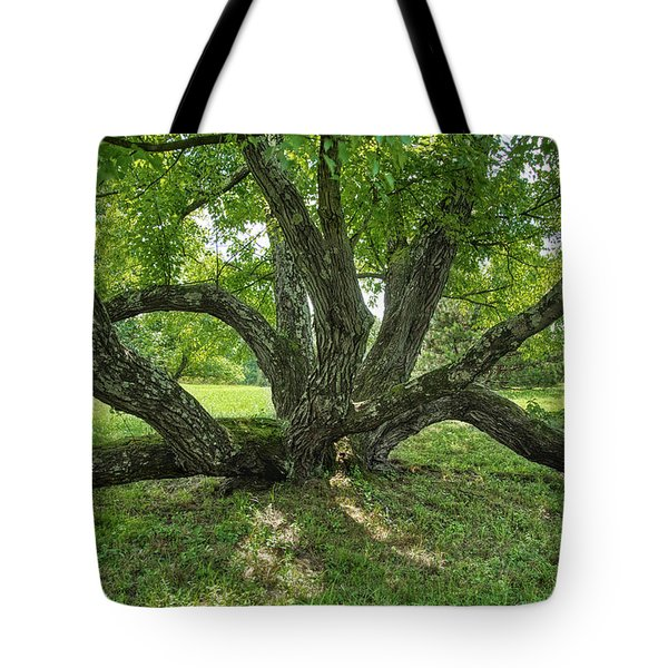 Octopus Tree Tote Bag