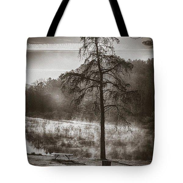 Odd Pair Sepia Tote Bag