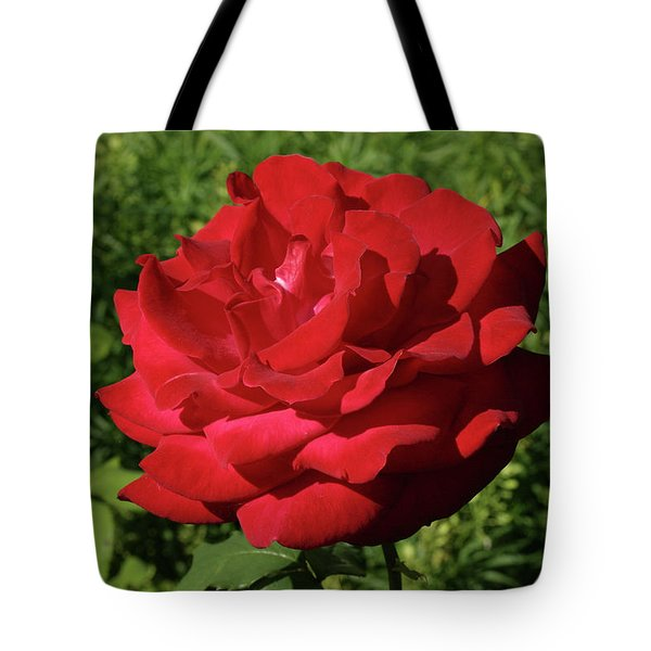 Oh The Blood Red Rose Tote Bag