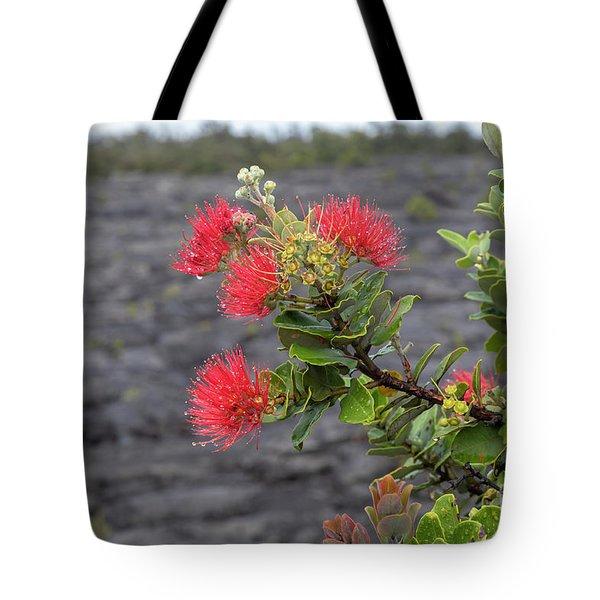 Ohia Blossoms Tote Bag