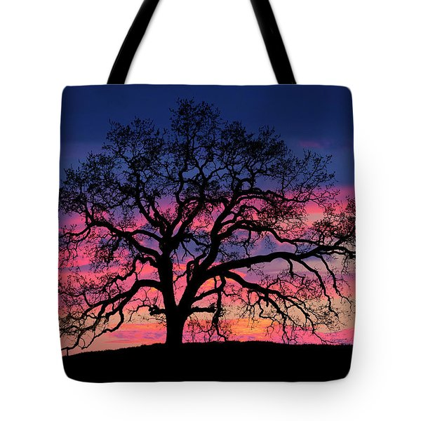 Tote Bag featuring the photograph Old Oak Sunset by John Rodrigues
