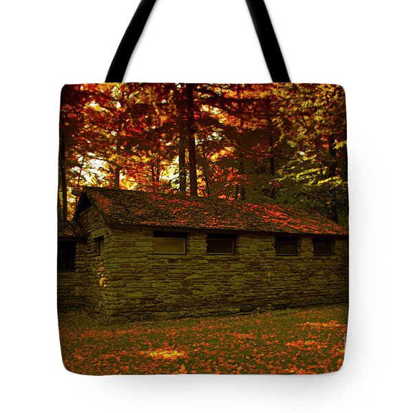 Old Stone Structure Tote Bag