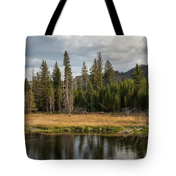 Tote Bag featuring the photograph On The Banks Of The Madison River by Lon Dittrick