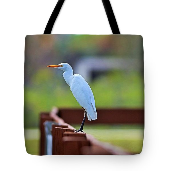 On The Rails Tote Bag