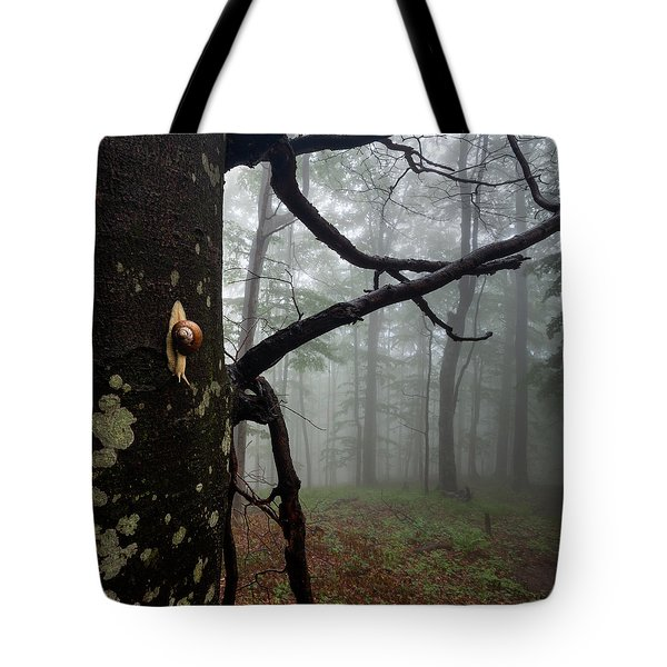 One Day Of The Snail's Life Tote Bag