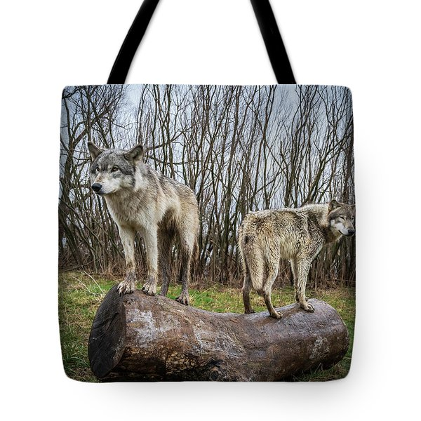 Opposite Ends Tote Bag