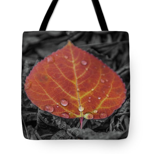 Orange Aspen Leaf Tote Bag