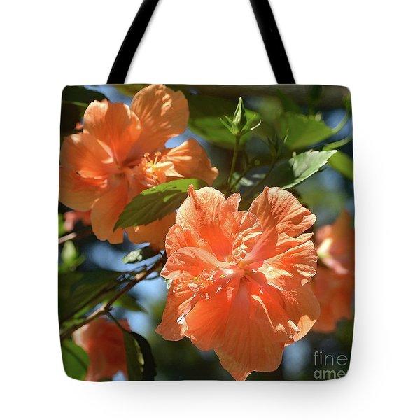 Orange Beauty - Hibiscus Tote Bag