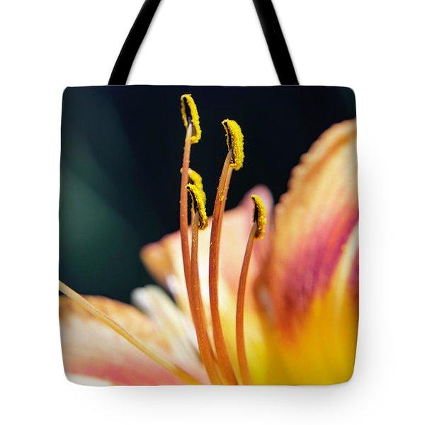 Orange Day Lily Stamen Tote Bag