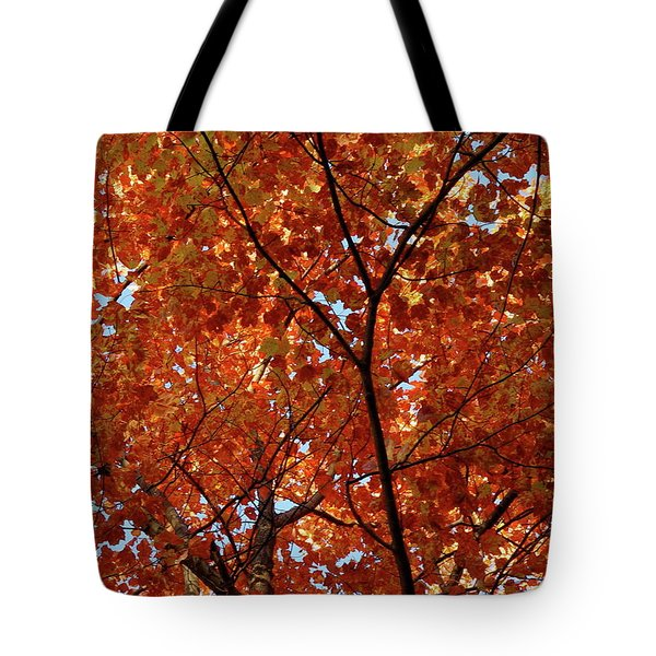 Orange Everywhere Tote Bag