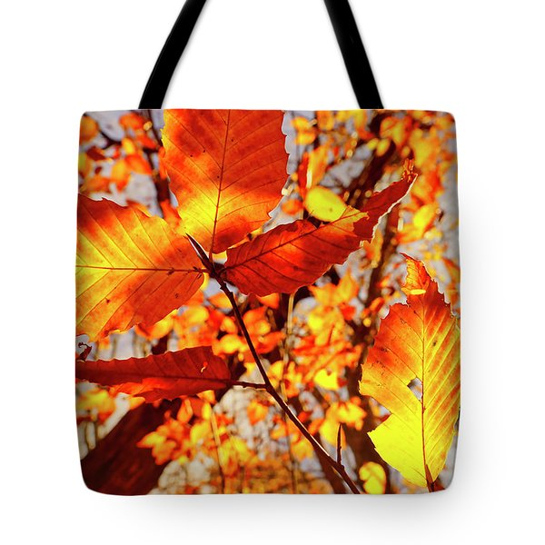 Orange Fall Leaves Tote Bag
