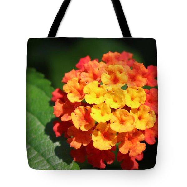 Orange Lantana Tote Bag
