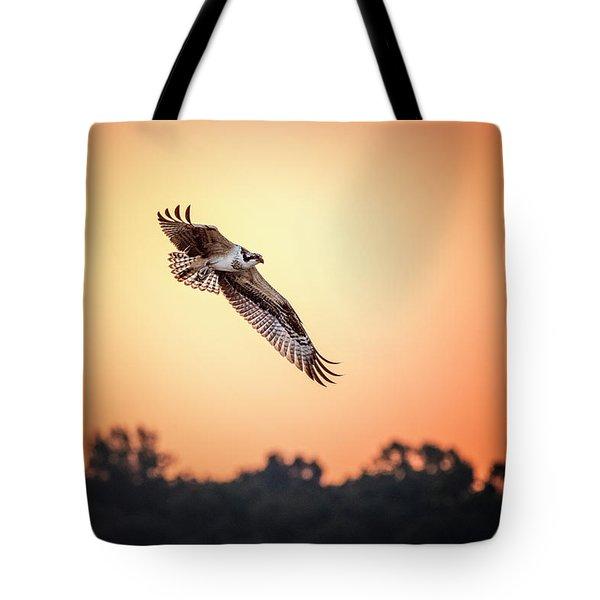 Osprey At Sunrise Tote Bag