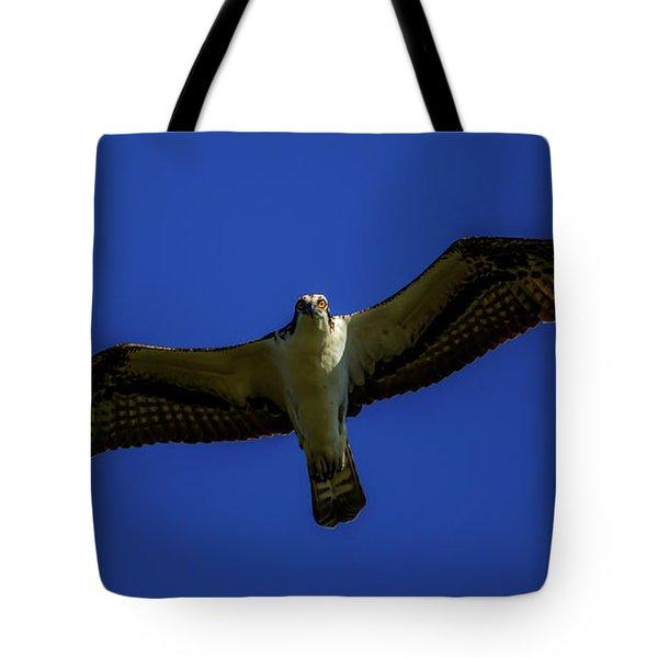 Osprey Glide In Blue Tote Bag