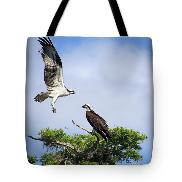 Tote Bag featuring the photograph Ospreys At Blue Cypress Lake by Michele A Loftus