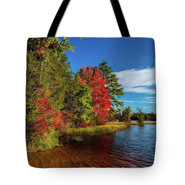 Tote Bag featuring the photograph Oswego Lake Pinelands by Louis Dallara