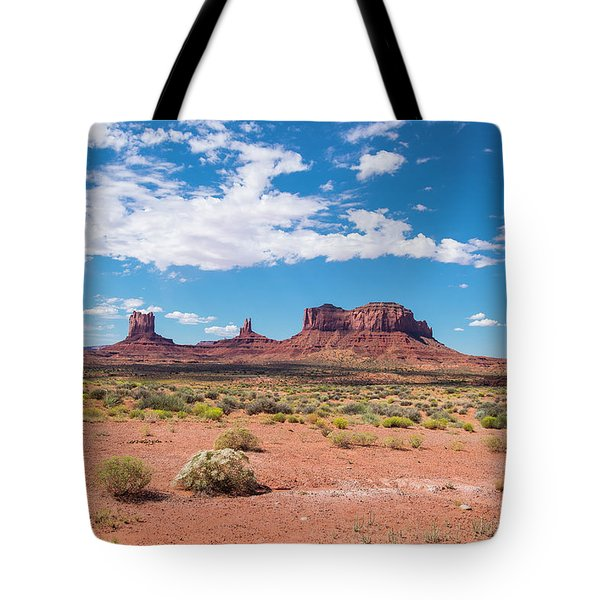 Outside The Park Tote Bag