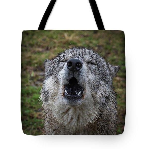 Owwwwwwwwwww Tote Bag