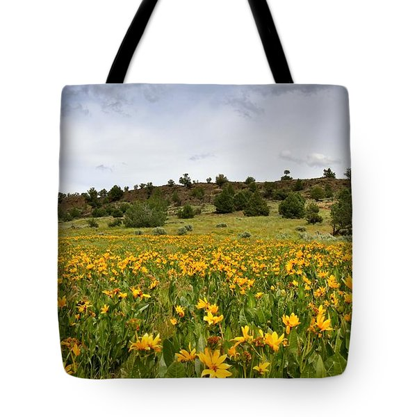 Owyhee Uplands Tote Bag