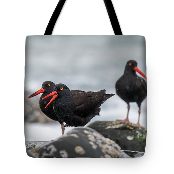 Oystercatchers In The Rain Tote Bag