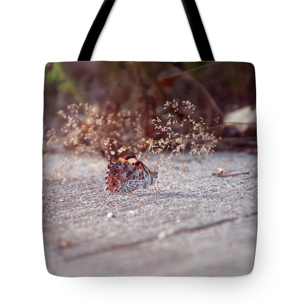 Painted Lady - Vanessa Cardui Tote Bag