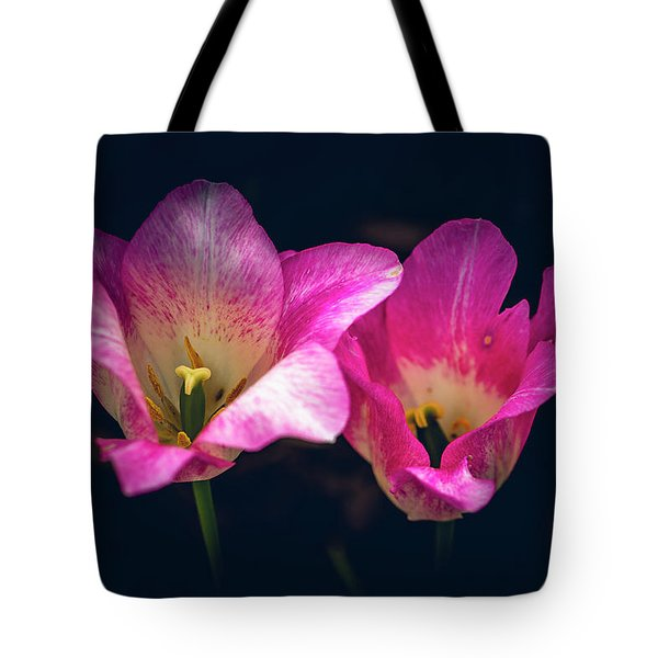 Paired Off Tote Bag