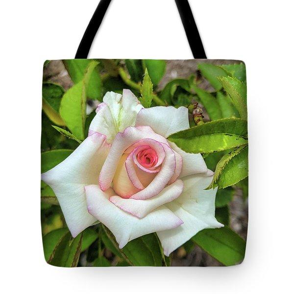 Pale Rose Tote Bag