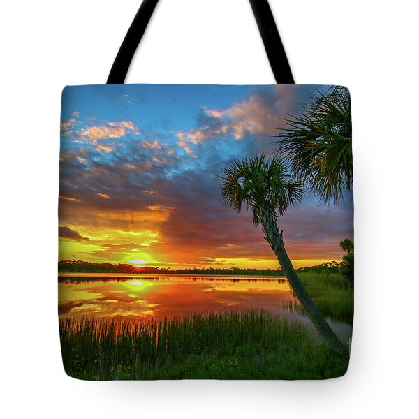 Tote Bag featuring the photograph Palm Tree Sunset by Tom Claud
