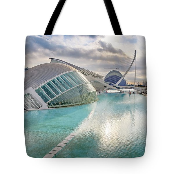 Panoramic Cinema In The City Of Sciences Of Valencia, Spain, Vis Tote Bag