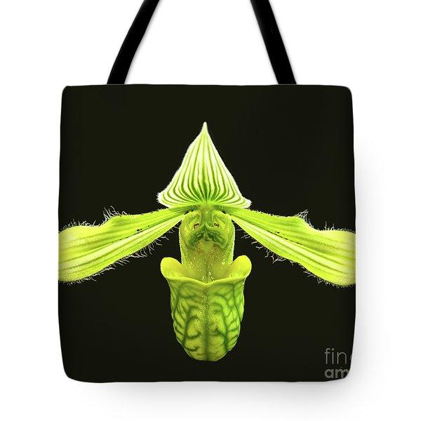 Paphiopedilum Venustum Closeup Tote Bag