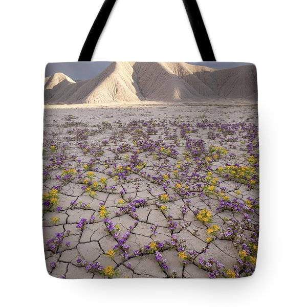 Parched Earth Tote Bag