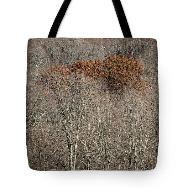 Passage - Tote Bag