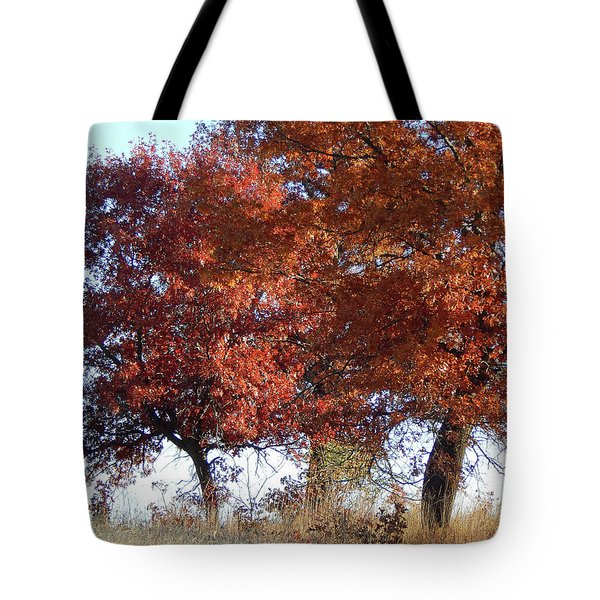 Passing Autumn Tote Bag