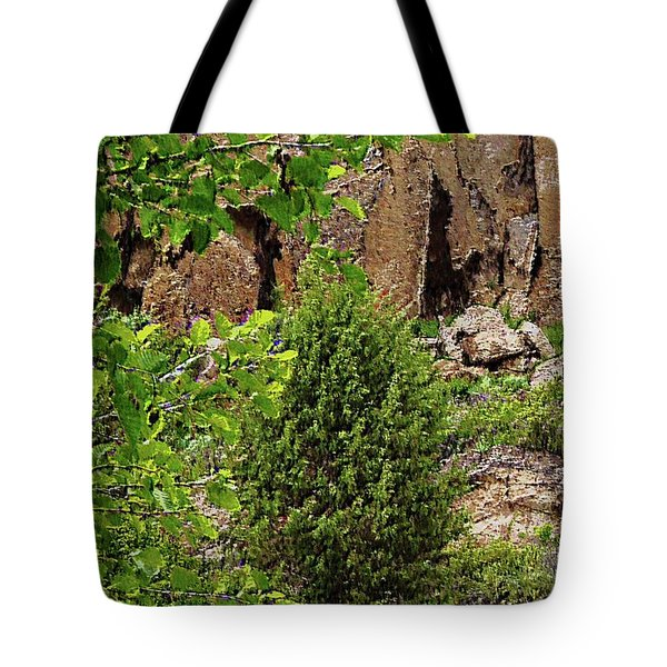 Passing By Tote Bag