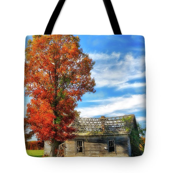 Past Its Prime Vintage Autumn Barn Ap Tote Bag