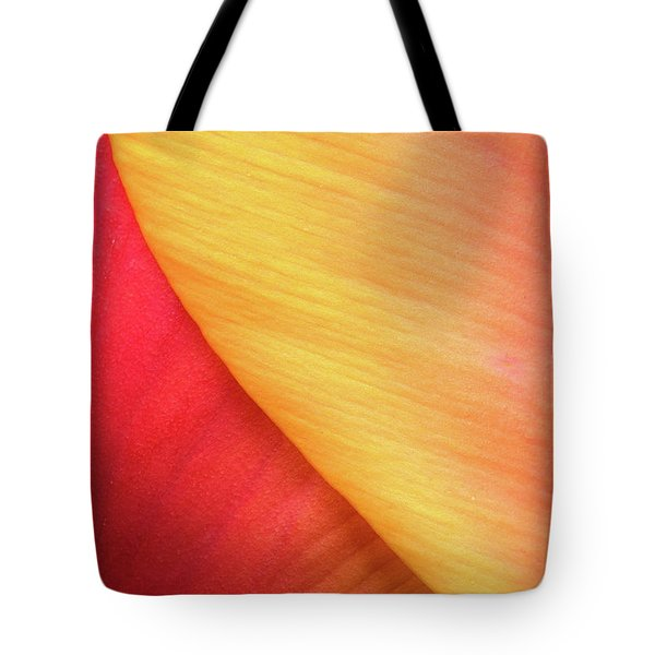Tote Bag featuring the photograph Pastel Curve  by Michael Hubley