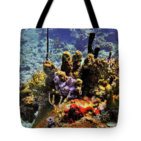 Patch Reef Bluff Tote Bag