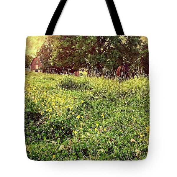 Tote Bag featuring the photograph Peaceful Pastoral Perspective by Carol Whaley Addassi