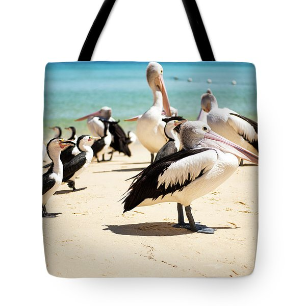 Tote Bag featuring the photograph Pelicans During The Day by Rob D Imagery