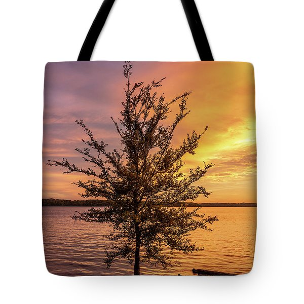 Percy Priest Lake Sunset Young Tree Tote Bag