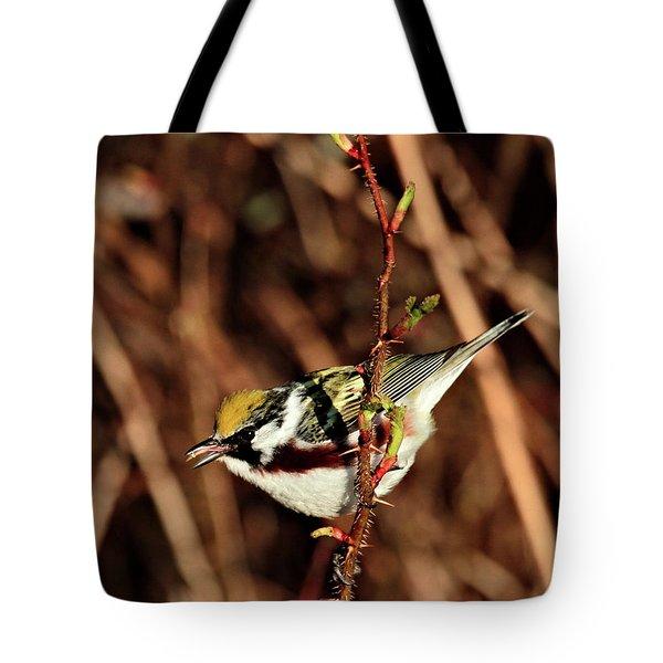 Perky Little Warbler Tote Bag