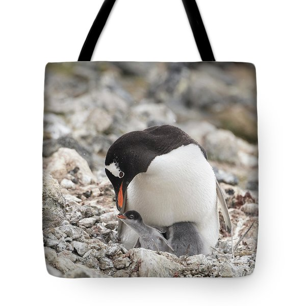 Personality Emerges Early Tote Bag