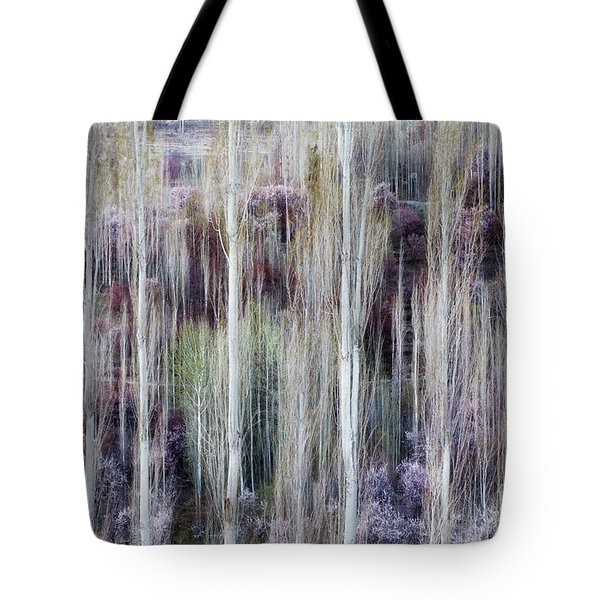 Phases Of Spring  Tote Bag
