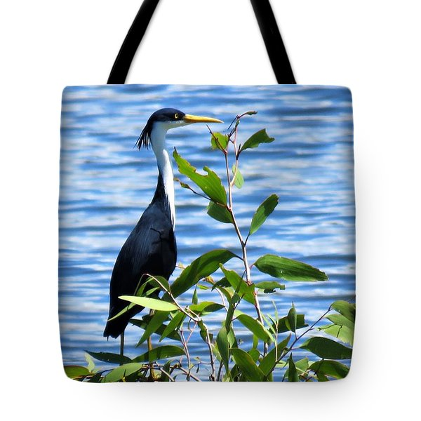 Pied Heron Tree Tote Bag