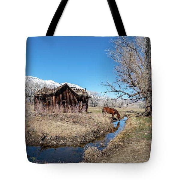 Pine Creek Horse Drinking Tote Bag