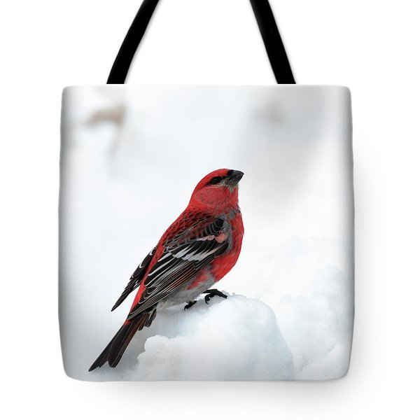 Pine Grosbeak In The Snow Tote Bag