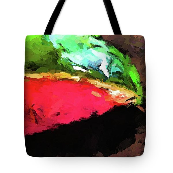 Pink And Green Watermelon Tote Bag