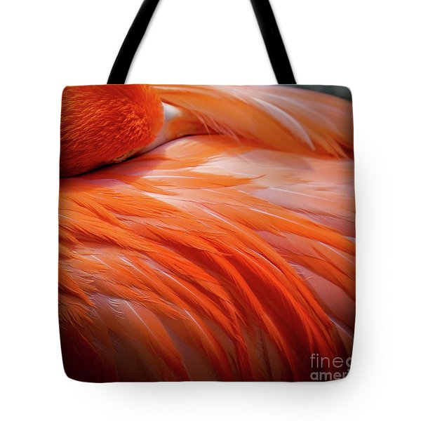 Pink Feathers Tote Bag
