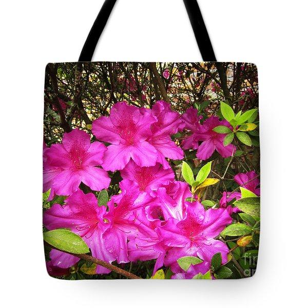 Pink Outside Tote Bag